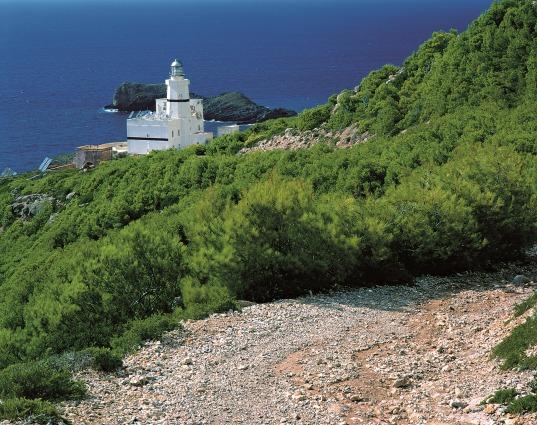 Punta Libeccio a Marettimo